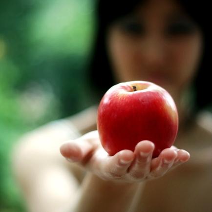 havva elma